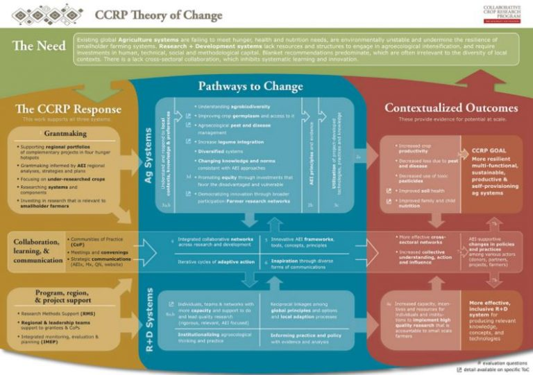 CCRP Theory Of Change