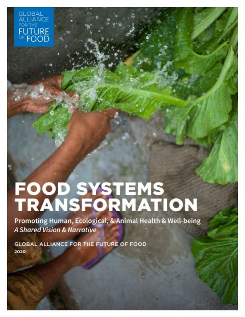 Food Systems Transformation Cover