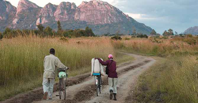 two men walking next to bicycles with their crops