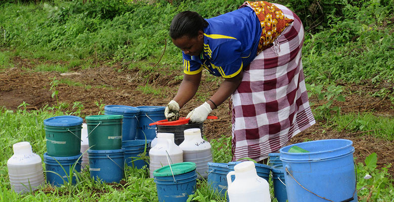 MSc student Angela Mkindi prepares to spray a naturally derived pesticide solution on a field in Lyamungo, Tanzania. Photo credit: Angela Mkindi