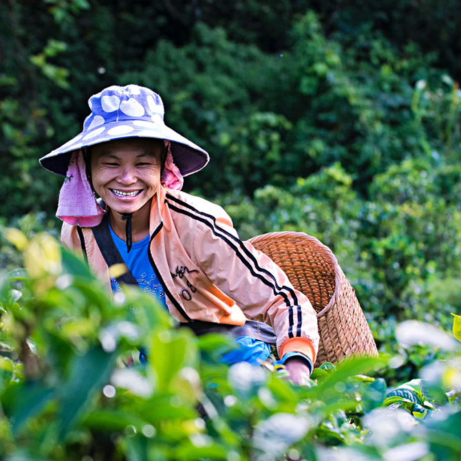 man smiling and looking through his crops
